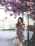 Cherry Blossom – Elodie in Paris