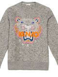 Eyes of the Tiger ! Vite un Pull Tigre