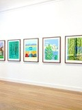Expo : David Hockney, The Yosemite Suite - Galerie Lelong - Paris 8