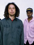 Music : Rage Against The Machine - Killing In the Name
