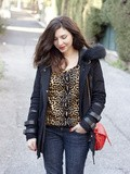 Pull leopard : check
